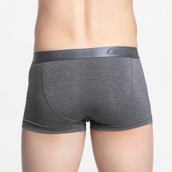 Men's boxer shorts with short legs